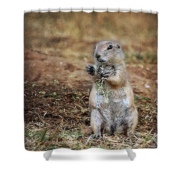 Shower Curtain featuring the photograph Doggie Snack by Jemmy Archer