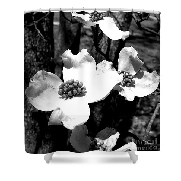 Dogwood 3 Shower Curtain