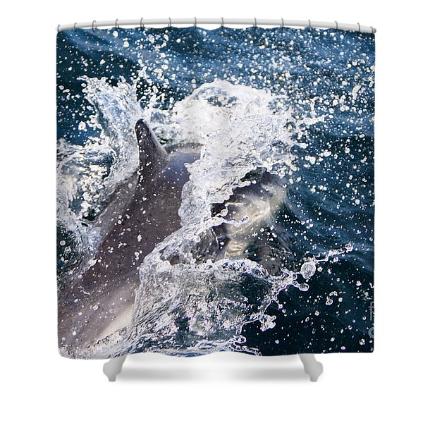 Shower Curtain featuring the photograph Dolphin Splash by John Wadleigh