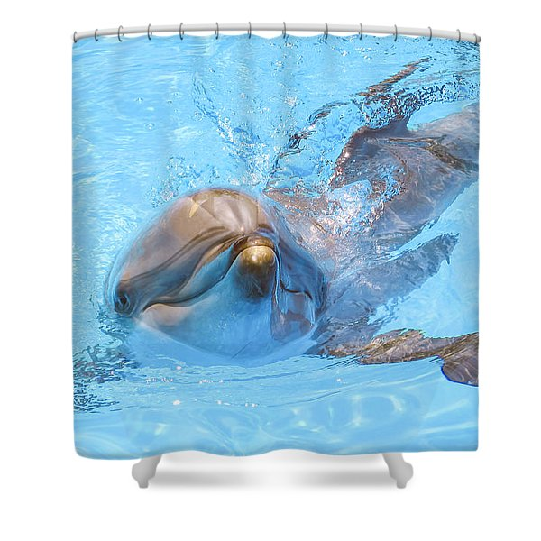 Dolphin Swimming Shower Curtain