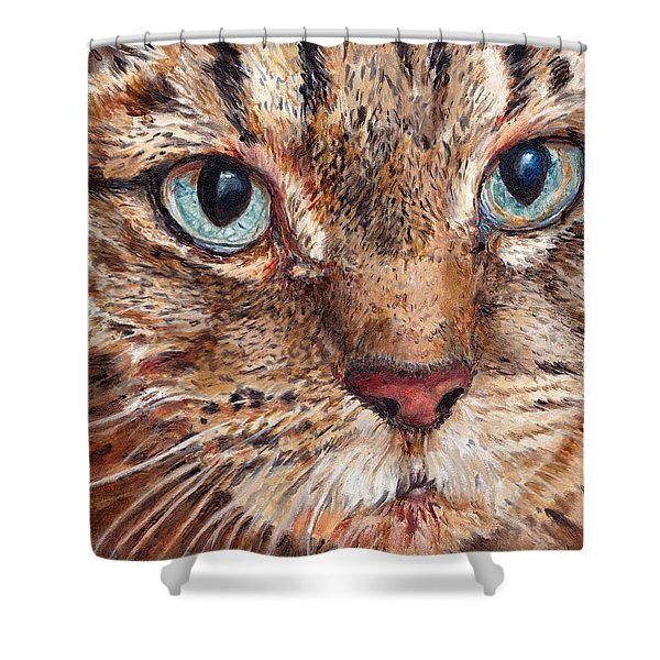 Domestic Tabby Cat Shower Curtain
