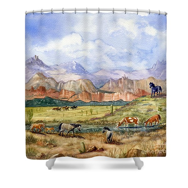 Don't Fence Me In Part Three Shower Curtain
