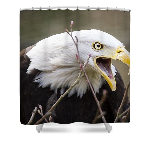 Don't Mess With This One Shower Curtain