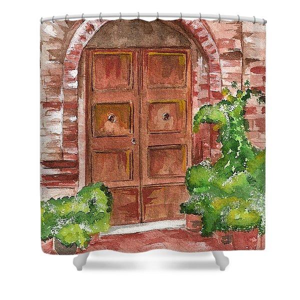 Door Series - Door 8 Shower Curtain