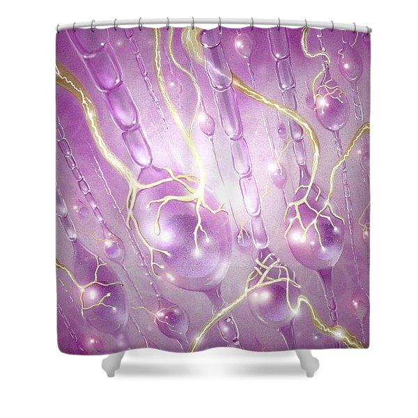Dorsal Horn Neuron Shower Curtain