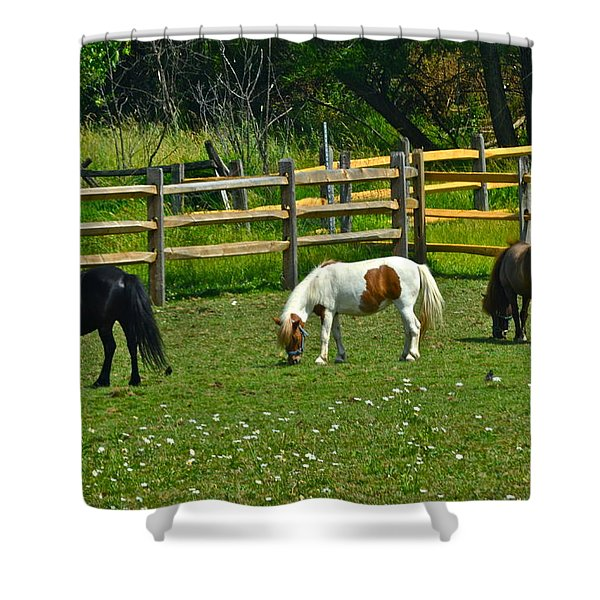 Down On The Ranch Shower Curtain