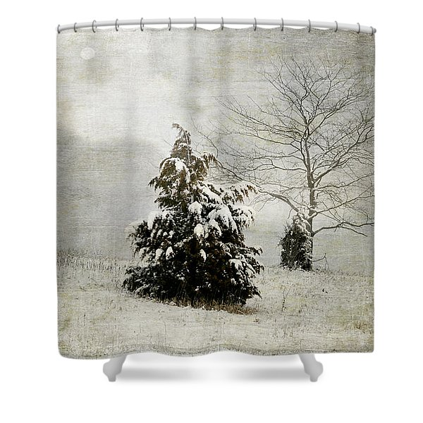 Dread Of Winter Shower Curtain