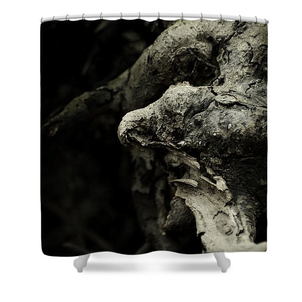 Dream Chanter Shower Curtain