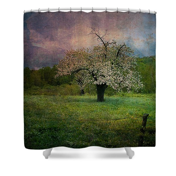 Dream Of Spring Shower Curtain