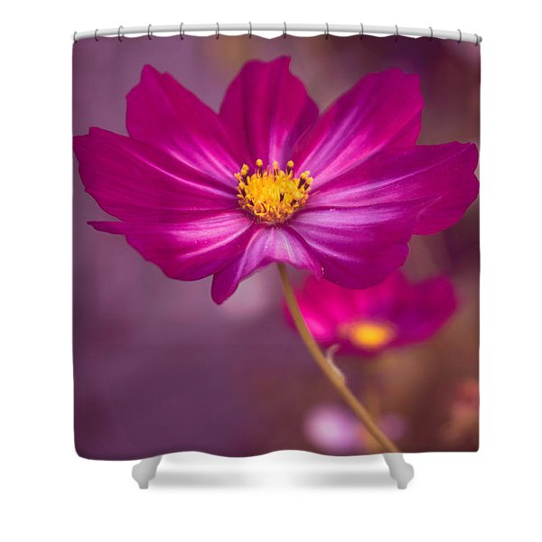 Dressed In Pink Shower Curtain