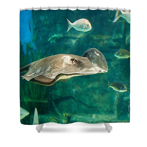 Drifting Through Life Shower Curtain