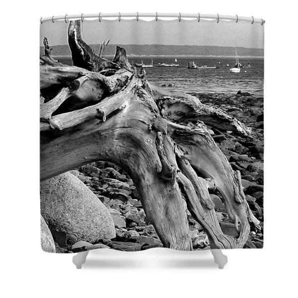 Shower Curtain featuring the photograph Driftwood On Rocky Beach by Jemmy Archer