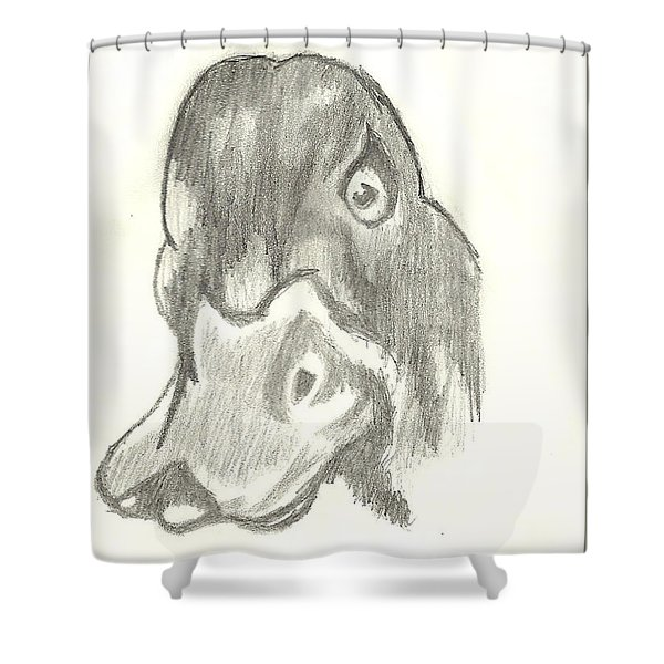 Shower Curtain featuring the drawing Duck Bill In Pencil by Marissa McAlister