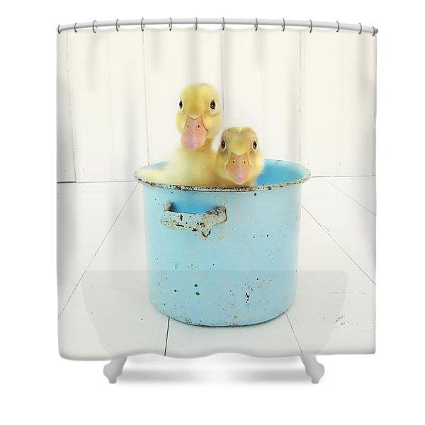 Duck Soup Shower Curtain