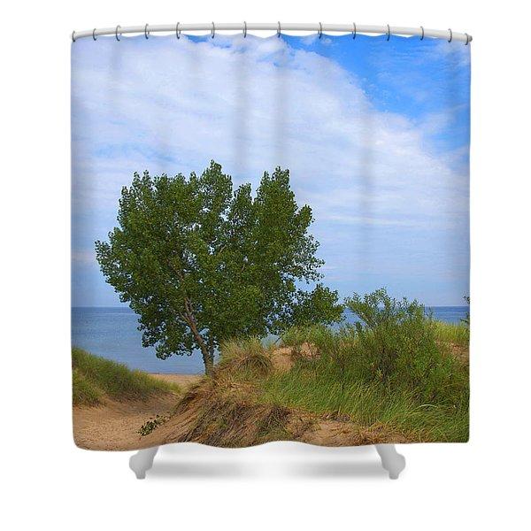 Dune - Indiana Lakeshore Shower Curtain