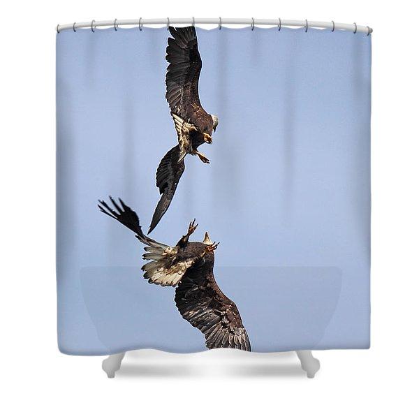 Eagle Ballet Shower Curtain
