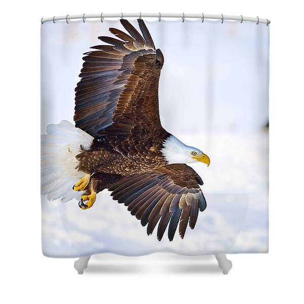 Eagle Landing Shower Curtain