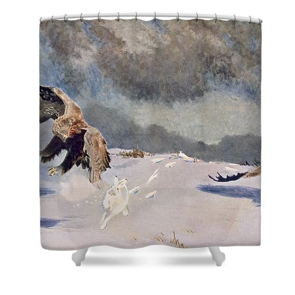 Eagles And Rabbit, 1922 Shower Curtain