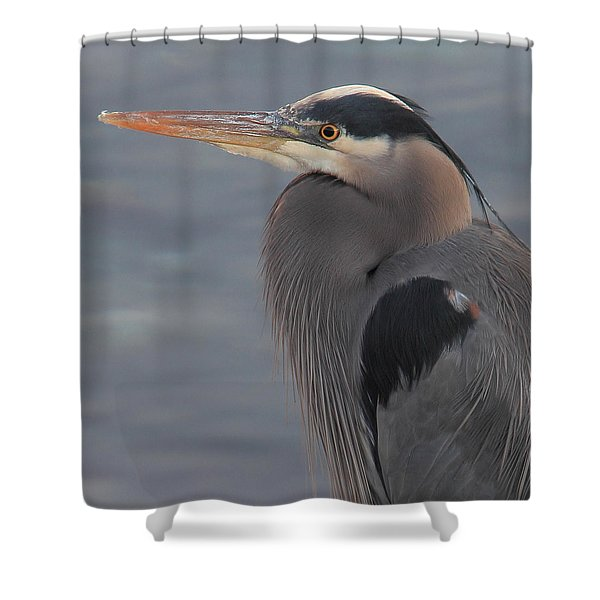 Shower Curtain featuring the photograph Early Bird 2 by Randy Hall