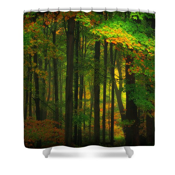 Early Fall 4 Shower Curtain