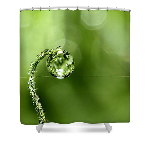 Early Morning Dew Shower Curtain