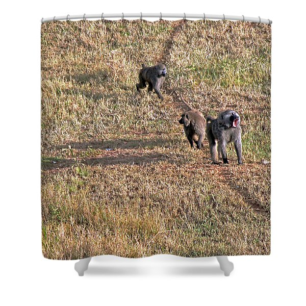 Early Morning Stroll Shower Curtain