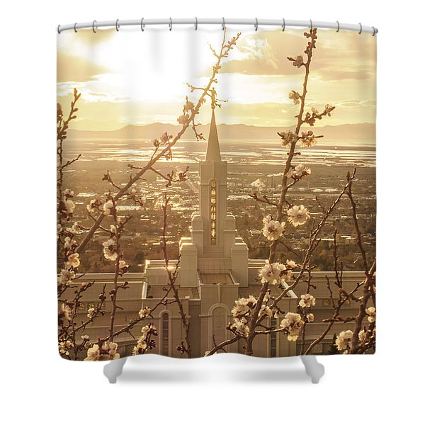Earth Renewed Shower Curtain