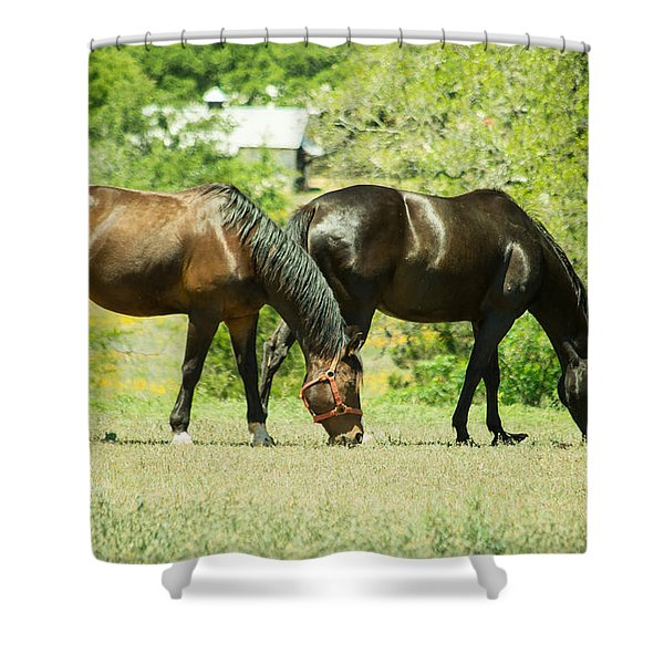 East Of Marble Falls Horses Shower Curtain