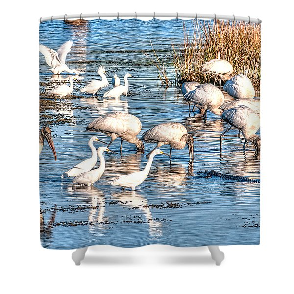 Eating With Caution Shower Curtain