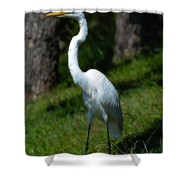Egret - Full Length Shower Curtain