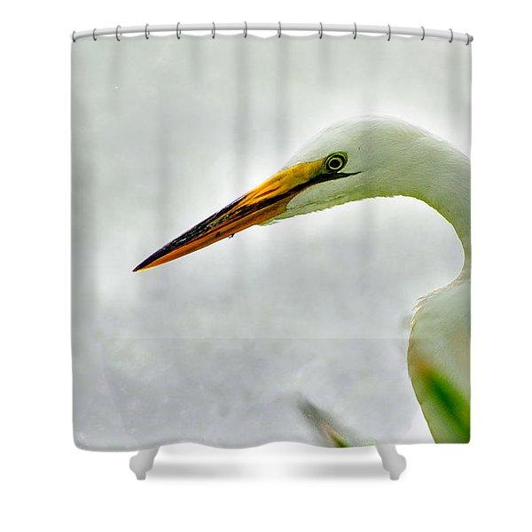 Egret Close-up Shower Curtain