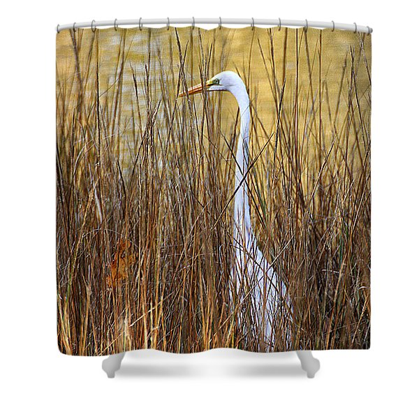 Shower Curtain featuring the photograph Egret In The Grass by William Selander