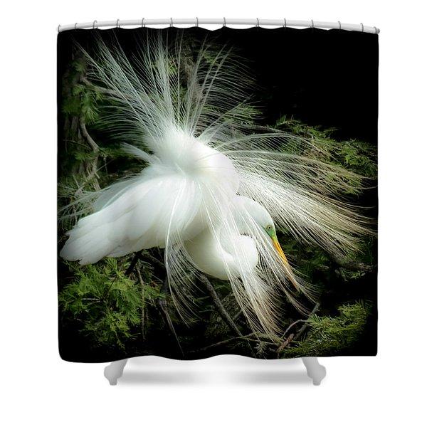 Elegance Of Creation Shower Curtain