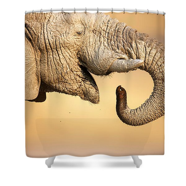 Elephant Drinking Shower Curtain