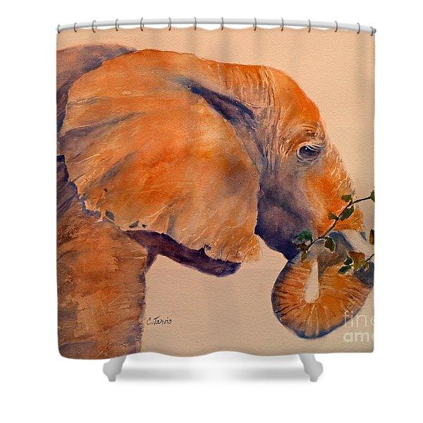 Elephant Eating Shower Curtain