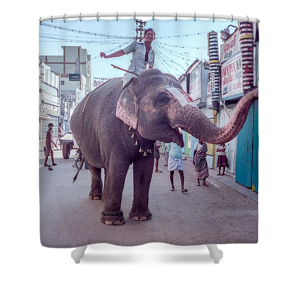 Elephant In The Street In India Shower Curtain