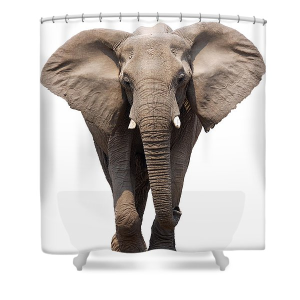 Elephant Isolated Shower Curtain