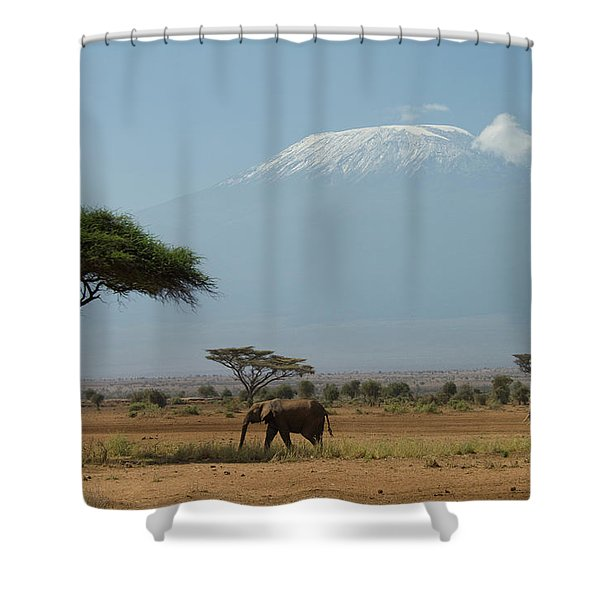 Elephant Walking In Plains With Mt Shower Curtain