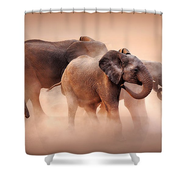 Elephants In Dust Shower Curtain