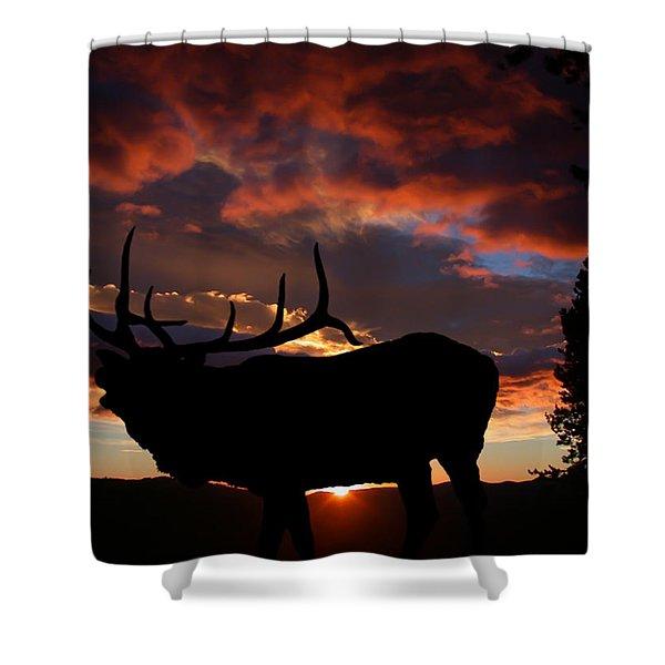 Elk At Sunset Shower Curtain