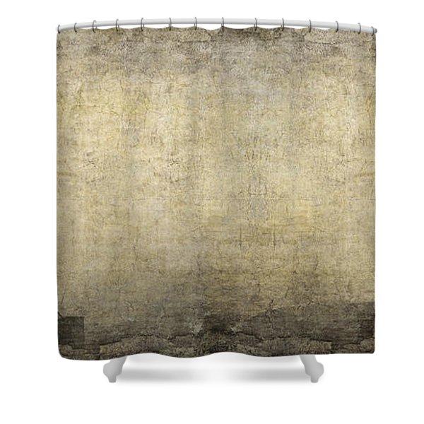 Energy Field Shower Curtain
