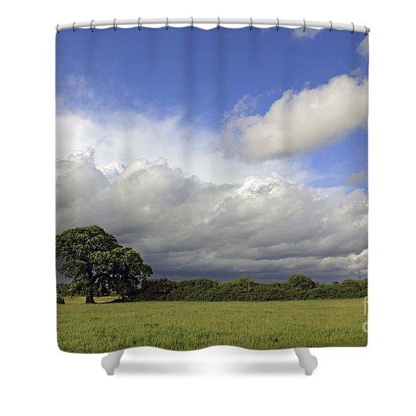 English Oak Under Stormy Skies Shower Curtain