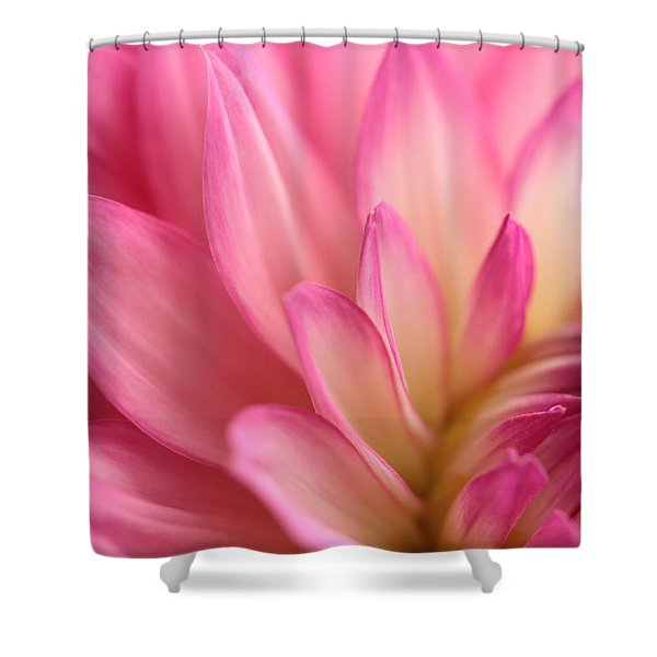Enticement Shower Curtain