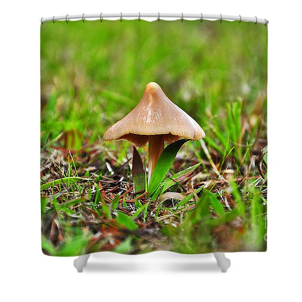 Entoloma Mushroom Shower Curtain