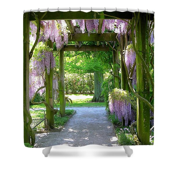 Entranceway To Fantasyland Shower Curtain