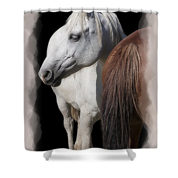 Equine Horse Head And Tail Shower Curtain