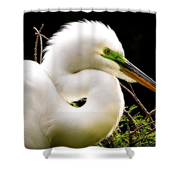 Essence Of Beauty Shower Curtain