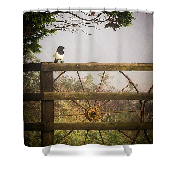 Eurasian Magpie In Morning Mist Shower Curtain