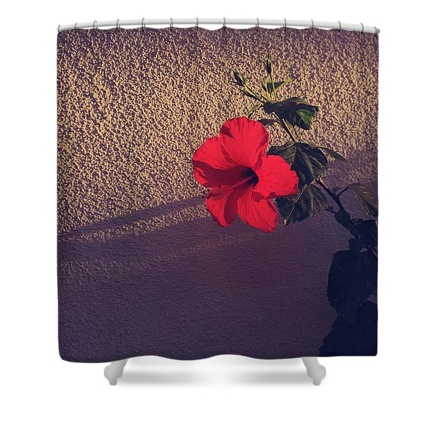Evening Comes Softly Shower Curtain