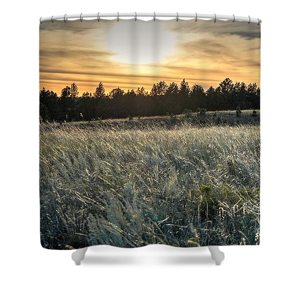 Evening Grasses In The Black Hills Shower Curtain